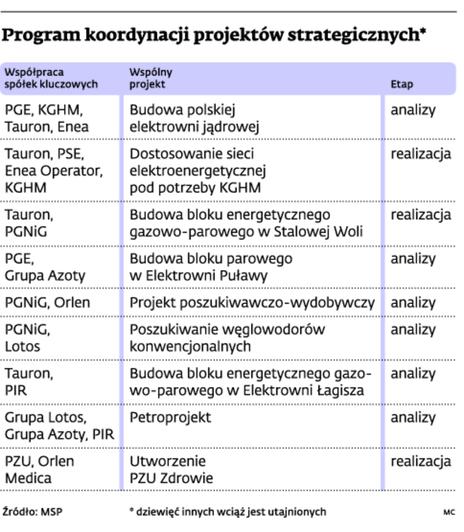 Program koordynacji projektów strategicznych*