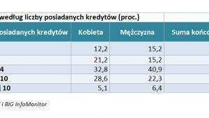 Podział według liczby posiadanych kredytów