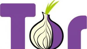 Logo projektu Tor, fot. Tor Project/Wikimedia Commons, lic. cc-by 3.0 USA