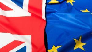 Wielka Brytania żyje m.in. ze studentów przyjeżdżających z innych państw unijnych.