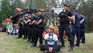 Puszcza Białowieska. Protest ekologów