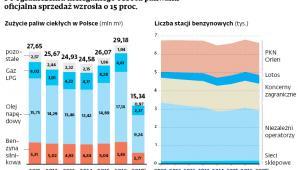 Po ograniczeniu nielegalnego obrotu paliwami oficjalna sprzedaż wzrosła o 15 proc.