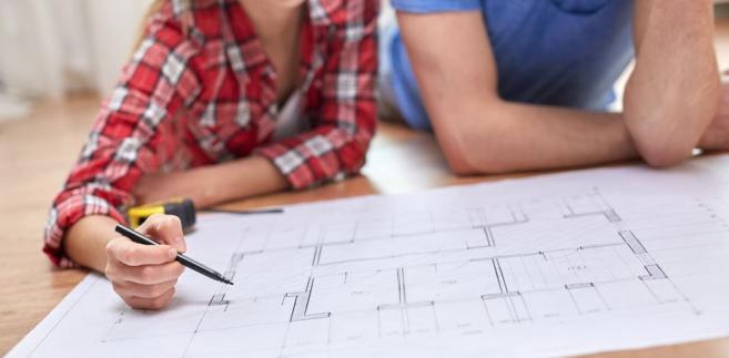 Spółka oprócz budowy domów drewnianych będzie mogła nabywać grunty, przeprowadzać remonty, przebudowy budynków, pozyskiwać, tworzyć nowe rozwiązania technologiczne w zakresie przetwarzania drewna, nabywać i przetwarzać surowiec drzewny, sprzedawać i nabywać produkty drzewne oraz prowadzić inną działalność związaną z energooszczędnym budownictwem drewnianym lub infrastrukturą towarzyszącą.