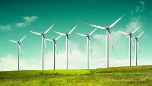 """Według posłów Platformy, """"ustawa o inwestycjach dotyczących elektrowni wiatrowych narusza ponadto art. 5 konstytucji, który stanowi m.in., że Rzeczpospolita Polska """"zapewnia ochronę środowiska, kierując się zasadą zrównoważonego rozwoju"""""""
