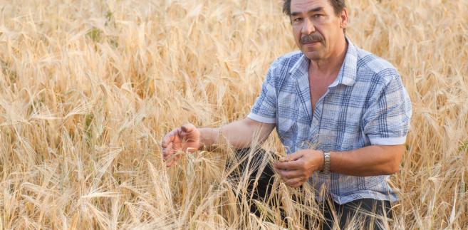 Poziom dopłat z budżetu państwa do składek ubezpieczeń na 2014 rok do został określony przez Radę Ministrów w wysokości 50 proc. składki do 1 ha upraw rolnych.