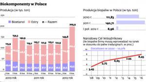 Biokomponenty w Polsce