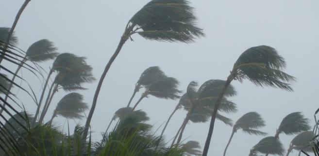 Jak powiedział amerykański meteorolog, wszyscy powinni byli już się ewakuować albo szukać schronienia w bezpiecznym miejscu
