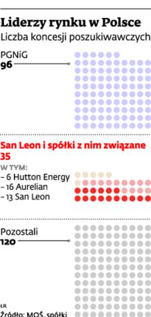 Liderzy na rynku w Polsce