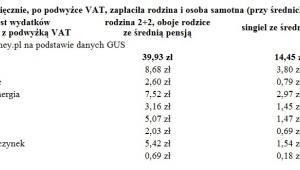Ile więcej miesięcznie, po podwyżce VAT, zapłaciła rodzina i osoba samotna (przy średnich zarobkach)