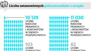 Liczba ustanowionych pełnomocników z urzędu