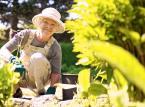 Emerytura w Szwecji: zwiedzanie, wspinaczka, safari. Seniorzy nie mają czasu na nudę