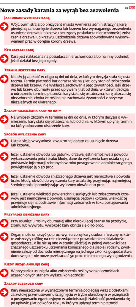 Nowe zasady karania za wyrąb bez zezwolenia