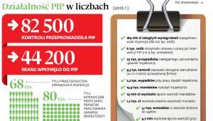 Działalność PIP w liczbach