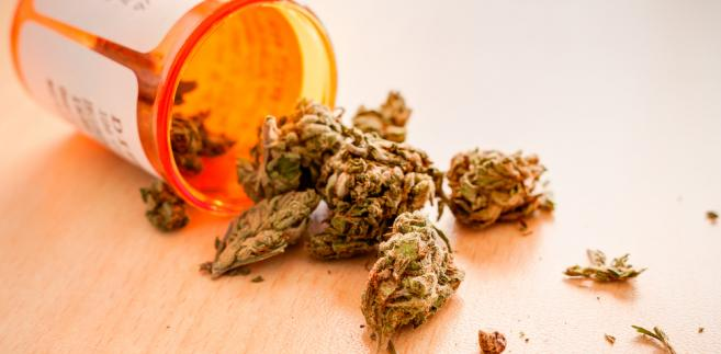 Parlament Europejski wezwał w środę państwa członkowskie do pełniejszego zbadania i wykorzystania leczniczego potencjału marihuany.