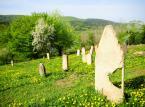 Treny okalające projektowany Turnicki Park Narodowy posiadają bardzo dobrze zachowane świadectwo o wielokulturowości terenów Podkarpacia. Znajdują się tam bowiem cmentarze żydowskie (na zdjęciu cmentarz w Rybotyczach), greckokatolickie czy ewangelickie. W Posadzie Rybotyckiej stoi natomiast najstarsza w Polsce XV-wieczna murowana cerkiew obronna pw. św. Onufrego (XIV-XVI w). W bezpośrednim sąsiedztwie projektowanego parku znajduje się także Kalwaria Pacławska ze szczególnie ważnym dla katolików Sanktuarium Męki Pańskiej i Matki Bożej Kalwaryjskiej. <br><br> fot. Maciek Suchorabski