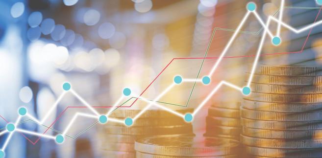 Na początku stycznia minister finansów Teresa Czerwińska zapowiadała, że budżet za 2018 rok zakończył się deficytem zdecydowanie poniżej 15 mld zł, a deficyt całego sektora finansów publicznych za ub.r. powinien wynieść około 0,5% PKB.