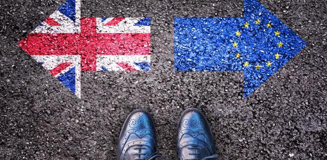 """""""Takie wycofanie, ustalone zgodnie z wymogami konstytucyjnymi, oznaczałoby, że Zjednoczone Królestwo pozostałoby w UE na warunkach, które nie uległy zmianie, jeśli chodzi o status państwa członkowskiego"""" - podkreślili sędziowie."""