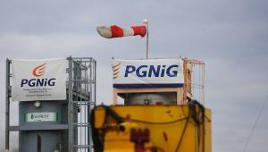 PGNiG ocenia, że dzięki pracom poszukiwawczym, inwestycjom w produkcję z nowych odwiertów, a także optymalizacji i intensyfikacji wydobycia ze złóż eksploatowanych, spółka była w stanie wyrównywać spadki produkcji, które są konsekwencją sczerpywania dotychczas eksploatowanych złóż.